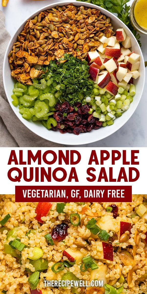Almond Apple Quinoa Salad is a fresh, healthy side dish. It's fast enough for a weeknight and perfect as a make-ahead dish for a holiday meal. You will love how the sweet and salty flavours combine in this salad! FOLLOW The Recipe Well for more great recipes! #healthy #veganoption #dairyfree #easy via @therecipewell